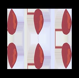 Bacche di Goji