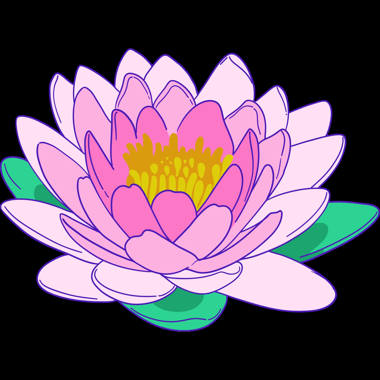Lotusextrakt